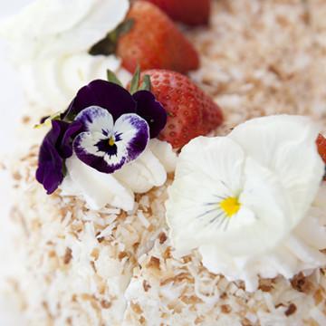 Ashley Ruzich Product Photography in Asheville North Carolina Coconut Cream Cake